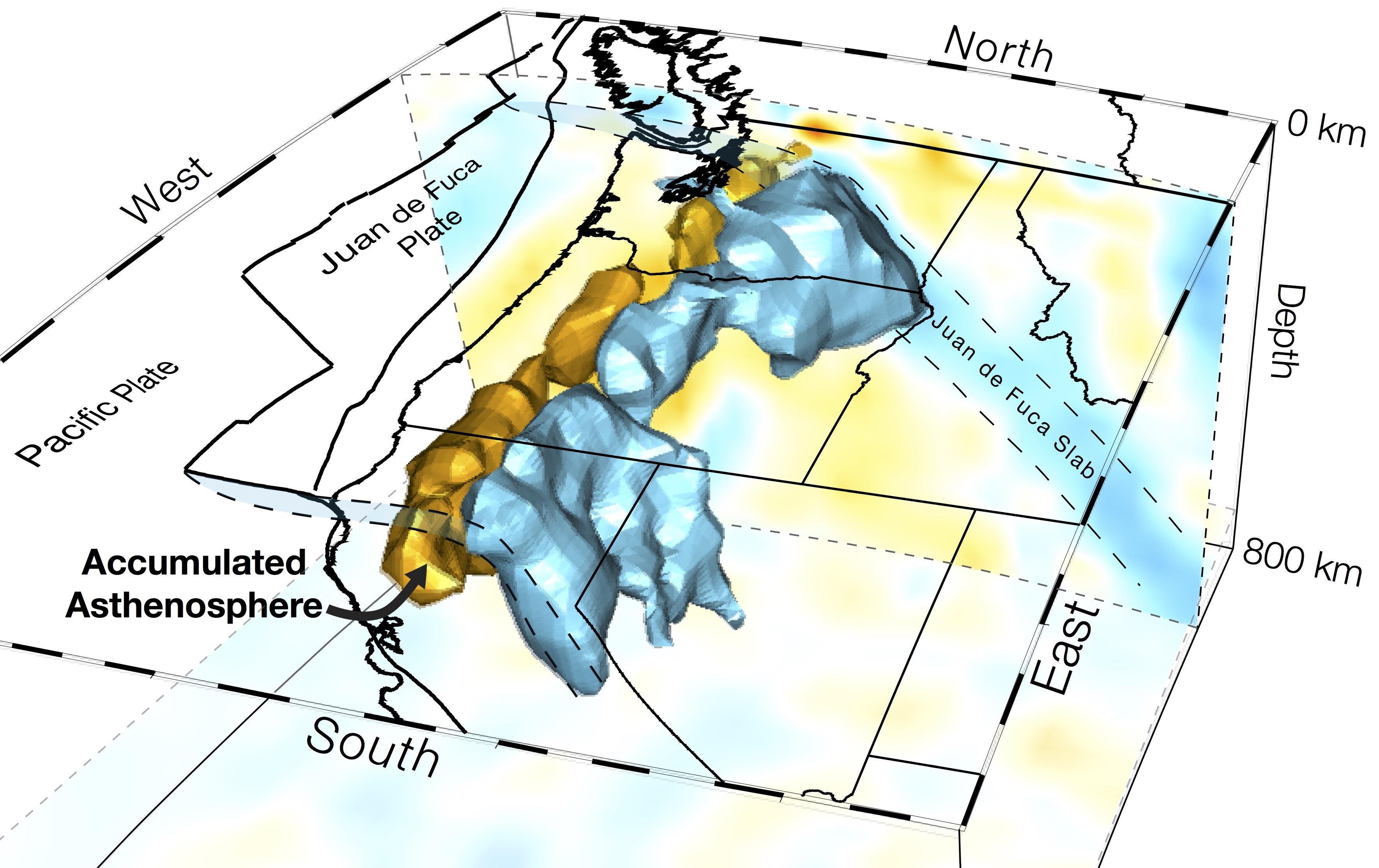 Cascadia tomography image
